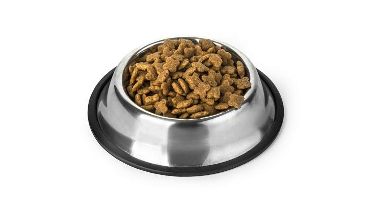 Cat Food Without Fish Products